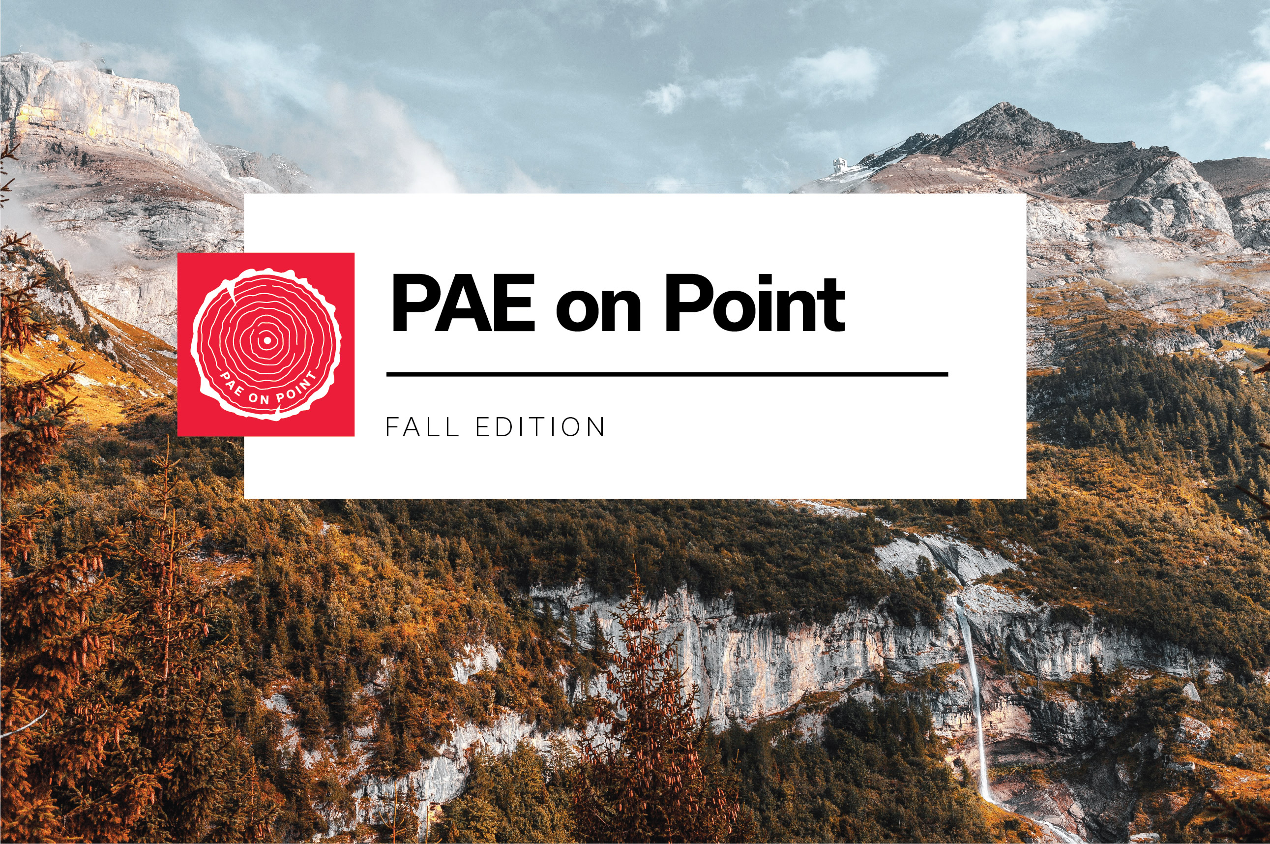PAE on Point | Fall Edition | Thought Leadership | Justin Stenkamp | Karina Hershberg | David Mead